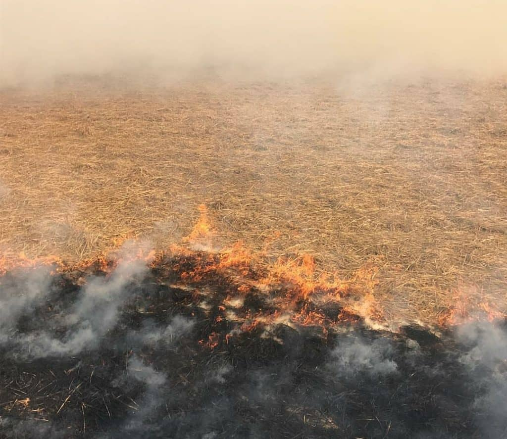 Stubble Burning Incidents Increase in Punjab