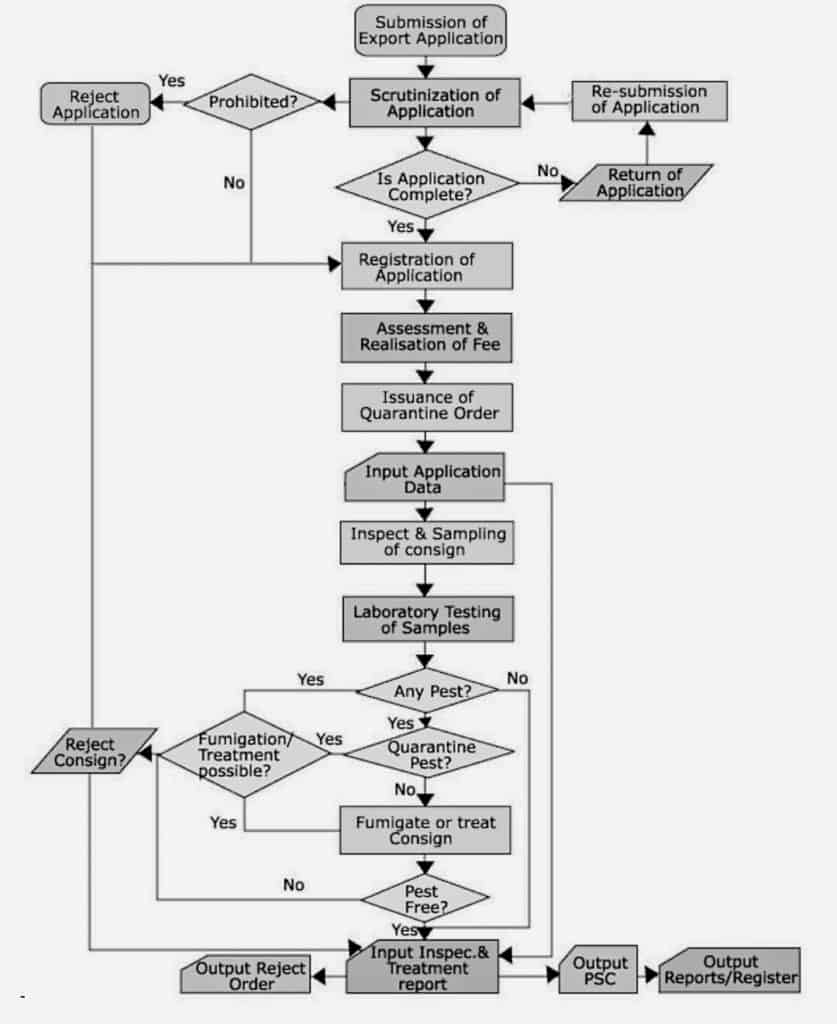 The export inspection and photosanitary certificate issuing process depicted in a flowchart