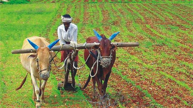 Andra Pradesh provides financial assistance through Rythu Bharosa scheme